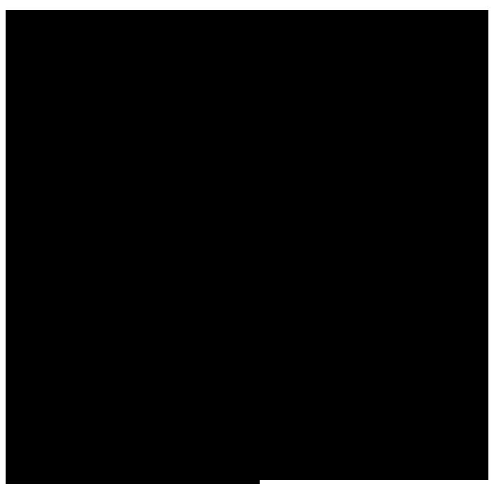 w4f icon