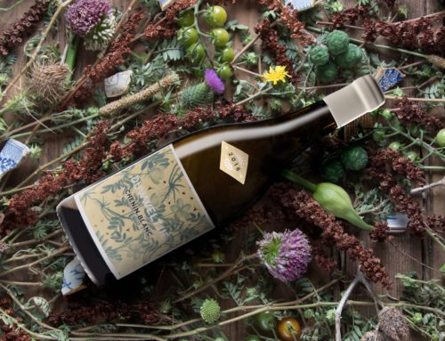 Q&A with winemaker – Thistle and Weed